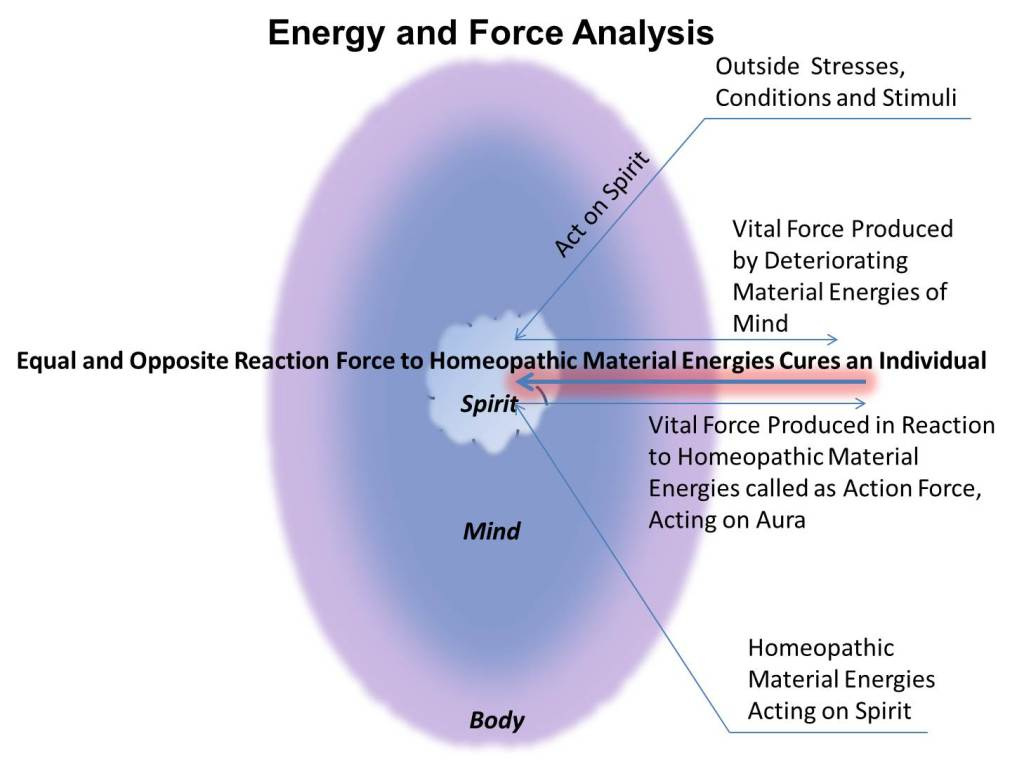 energy-and-force-analysis