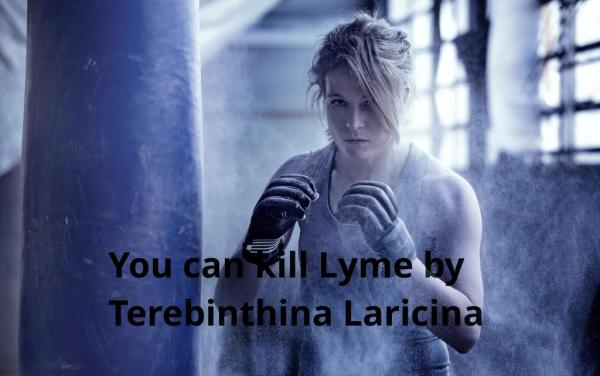 kill-lyme-by-terebinthina-laricina